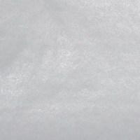 Vlizelín biely