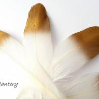 Dekoračné pierka bielo zlaté