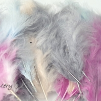 Dekoračné pierka farebný mix 50 kusov