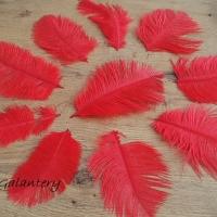 Dekoračné pierka Marabou - Mix veľkostí - 10 kusov - Červené