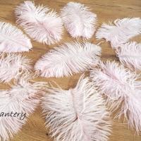 Dekoračné pierka Marabou - Mix veľkostí - 10 kusov - Svetlá ružová