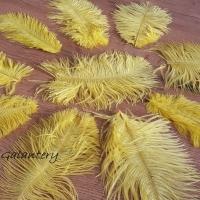Dekoračné pierka Marabou - Mix veľkostí - 10 kusov - Žltá
