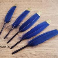 Dekoračné pierka - Trblietavé - Kráľovská modrá