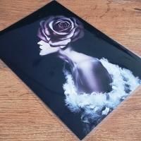 Nažehľovacia nálepka - DREAM GIRL