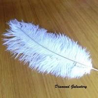 Dekoračné pierka biele - 18 cm