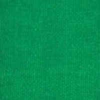 Taftová stuha s rexorom zelená