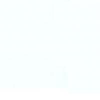 Taftová stuha s rexorom biela