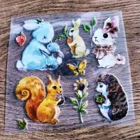 Nažehľovacia nálepka - Zvieratká - 12 x 12 cm
