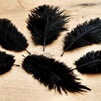 Pierko ozdobné Marabou - 15-20 cm - Čierne