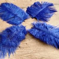 Pierko ozdobné Marabou - 15-20 cm - Kráľovská Modrá